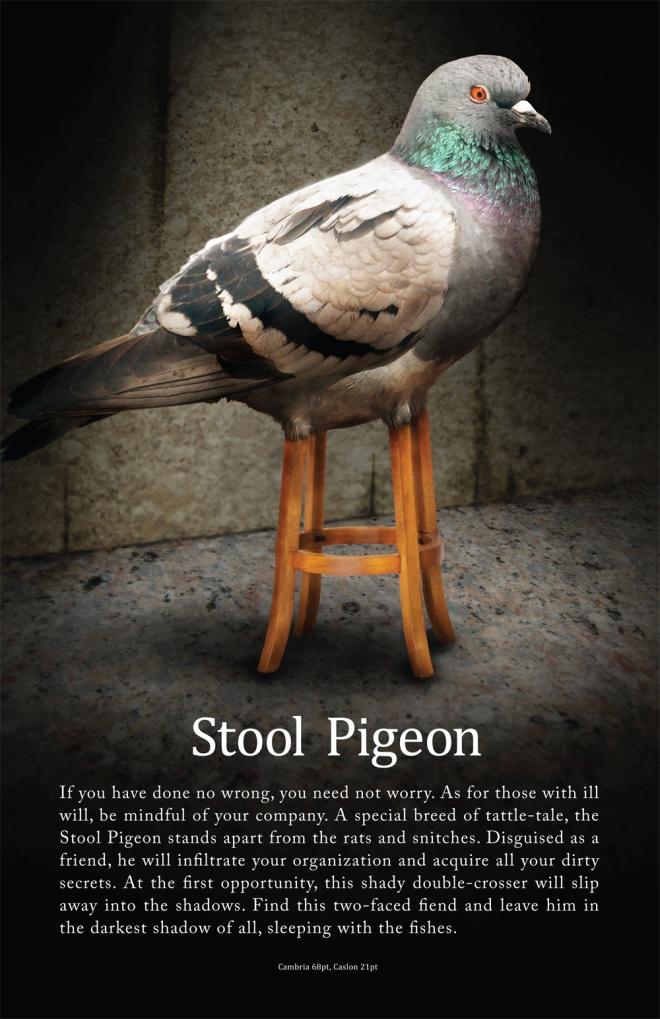 stool-pigeon1