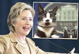 Hillary Clinton the confused. A nurseryrhyme.